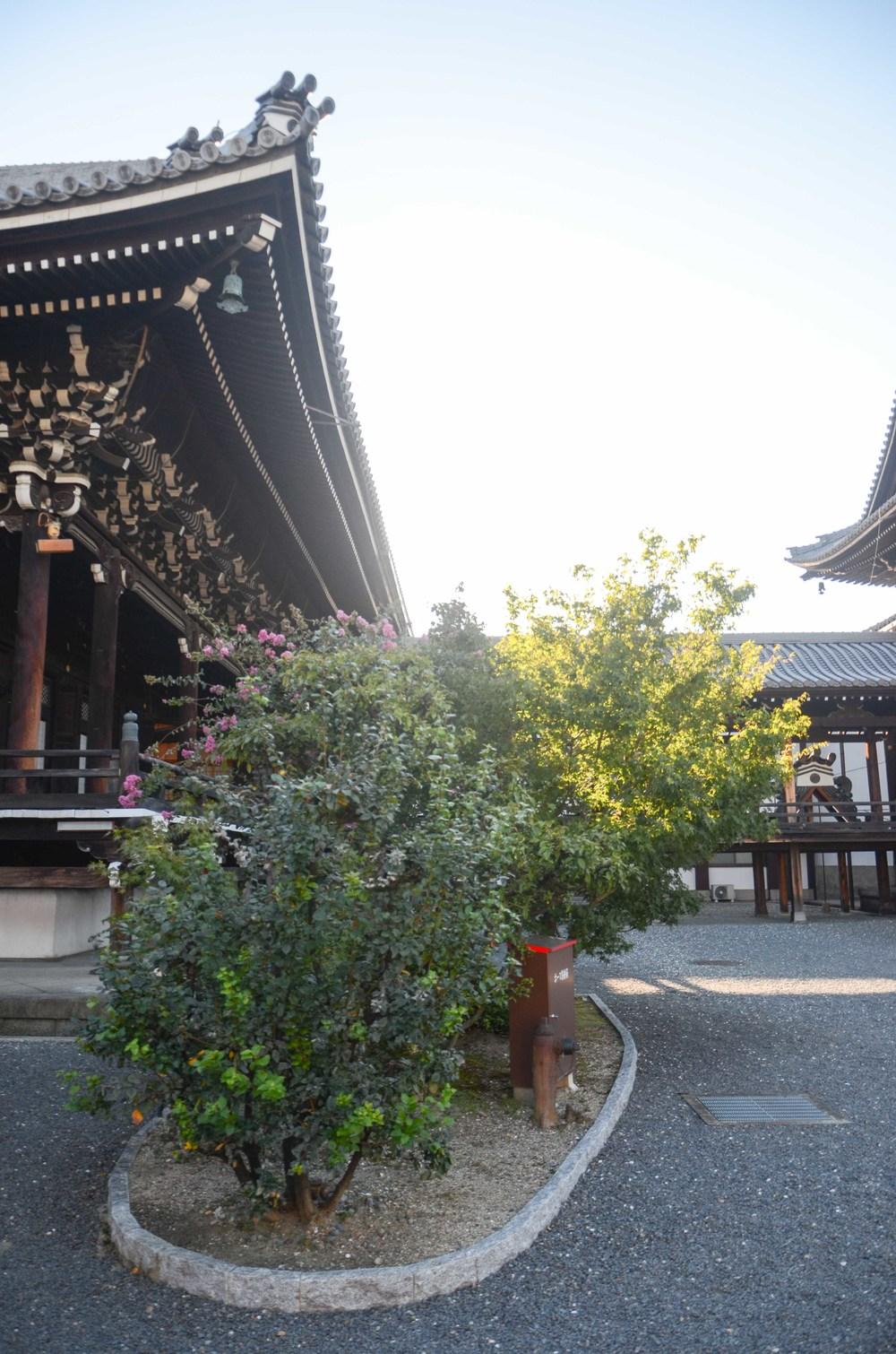 6 西本願寺