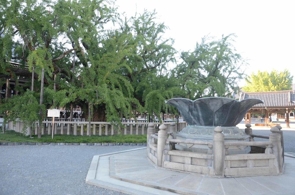 9 西本願寺