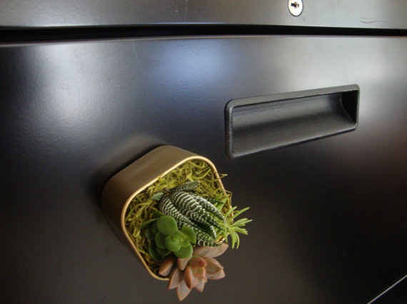 Easy greenery! Magnetic succulents...