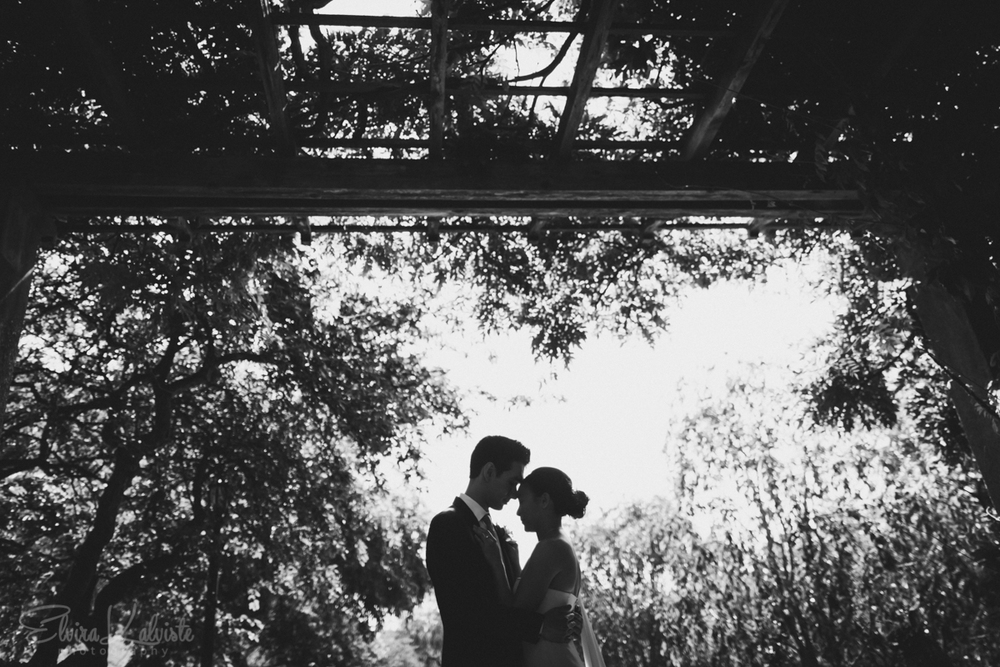 Kevin-Diana-Brooklyn-Botanic-Garden-Wedding-The-Atrium-Photography-25.jpg