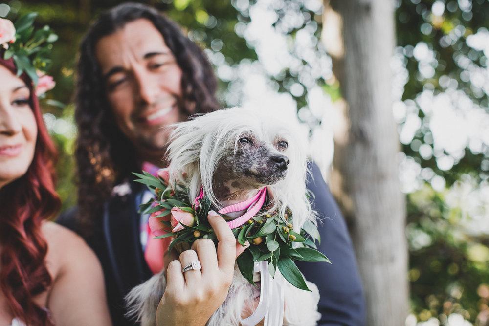 Jedediah-Hawkins-Inn-Documentary-Wedding-Photographer-Long-Island-41.jpg