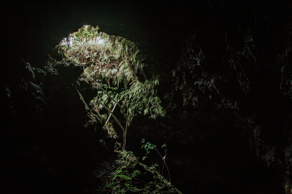 We went down a lava tube which is a natural tunnel within a solidified lava flow, formerly occupied by flowing molten lava. It was surreal and pitch black except for the flash lights they provided.