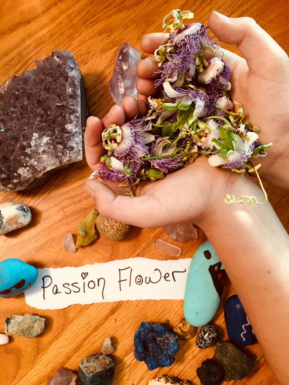 Passion Flower.jpg