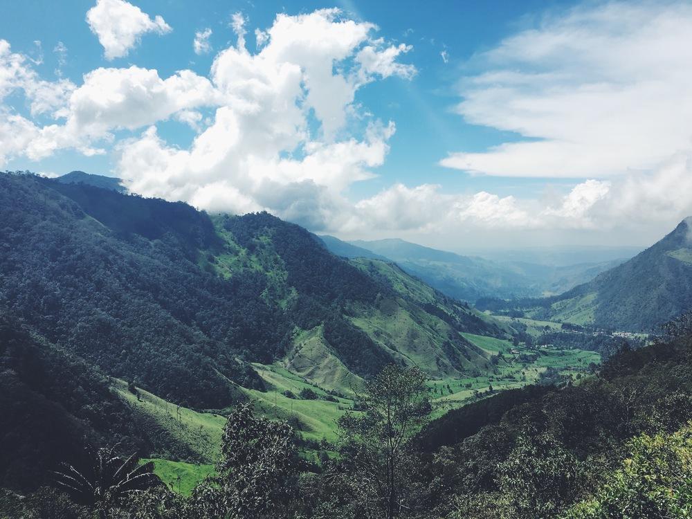 Valle del Cocora, Colombia. 2015 © Laura Beltrán Villamizar
