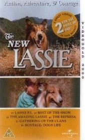 The New Lassie.jpg