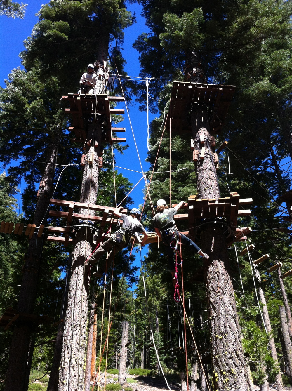 Building the Spiral Course at Tahoe Treetop Adventure Park