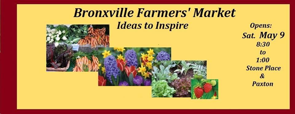bronxville farmers market