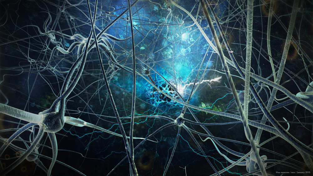 The amazing neural pathways of the brain