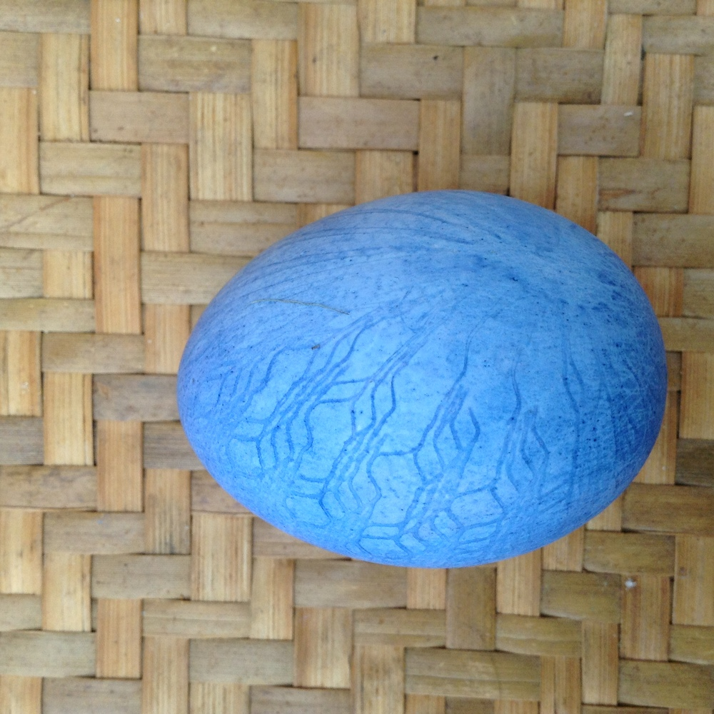 bluelace.jpg