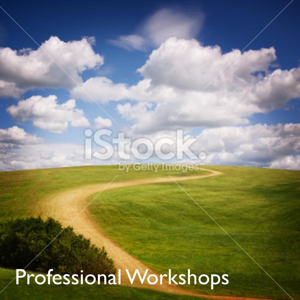 Pro Workshops 3.jpg