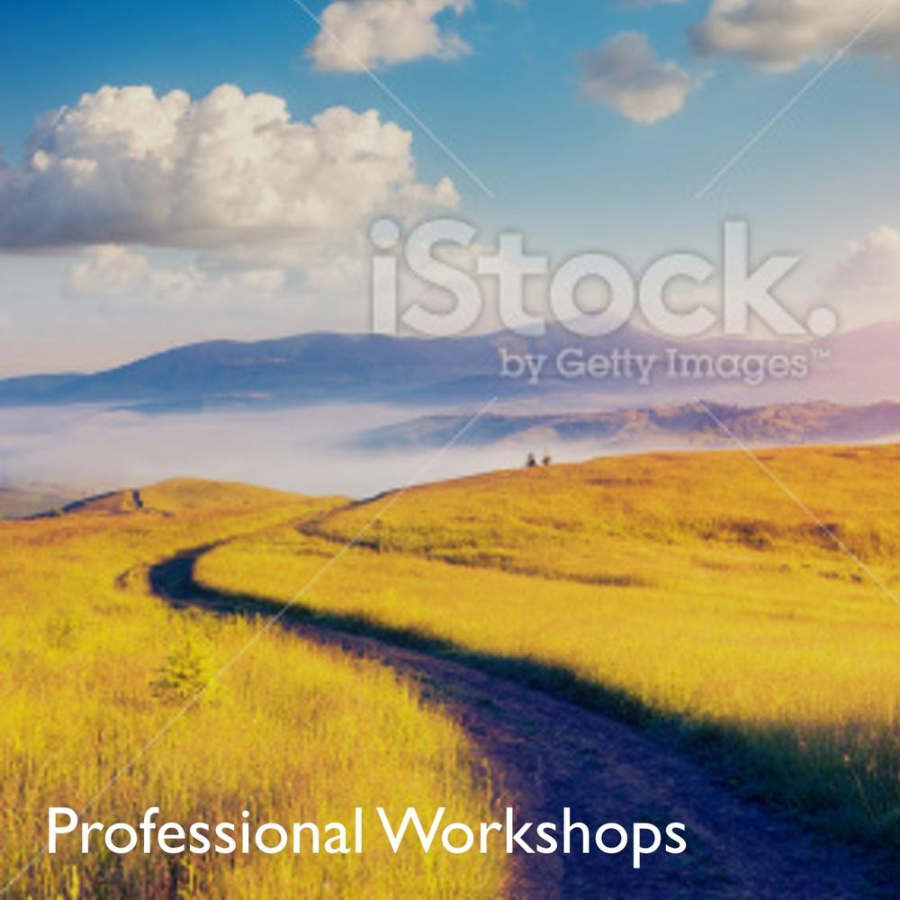 Pro Workshops 4.jpg