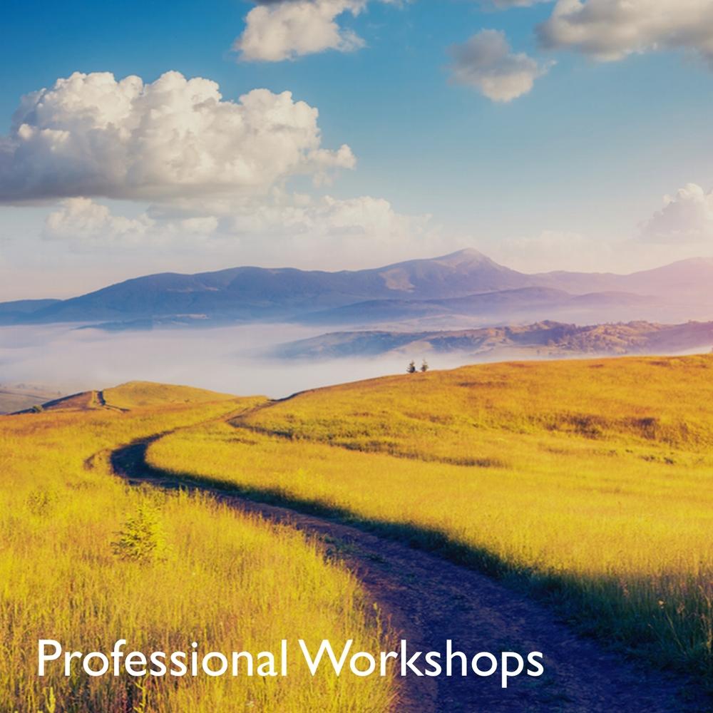 Pro Workshops.jpg
