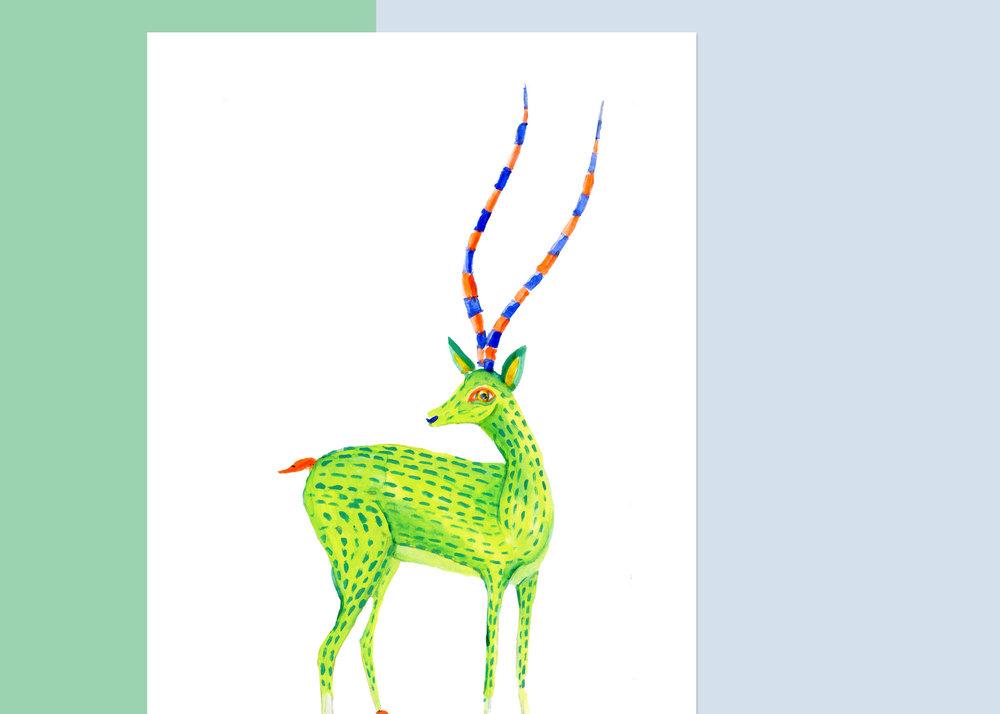 5 X 7 OAXACA gazelle $50