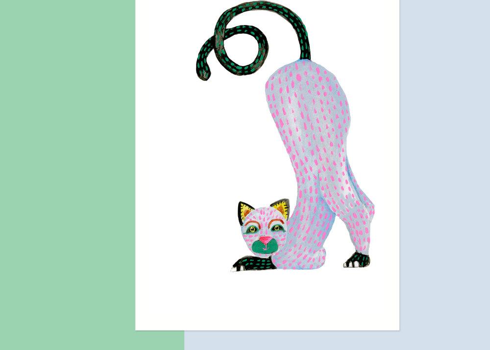 5 X 7 OAXACA CAT $50