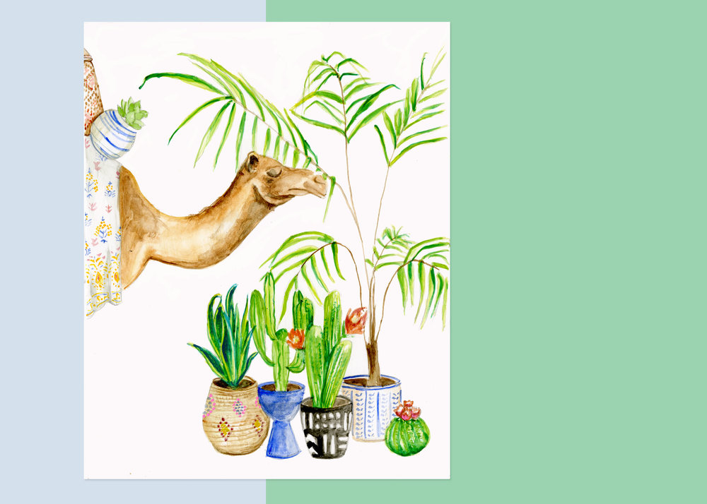 Camel with plants 8 x 10 $____ 11 x 14 $____ 16 x 20 $____