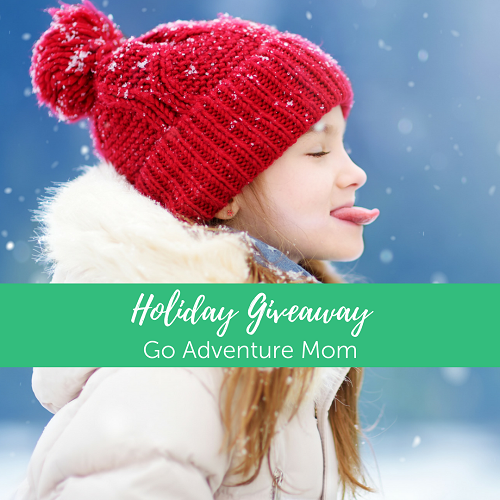 Holiday Giveaway Cover Image-13.png