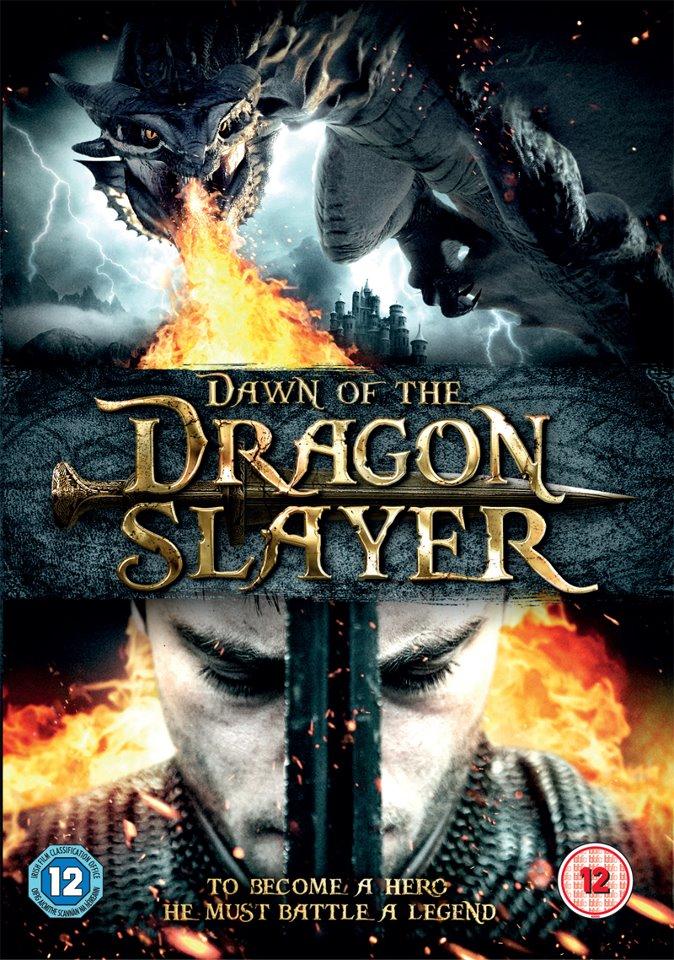 Paladin DVD Poster.jpg