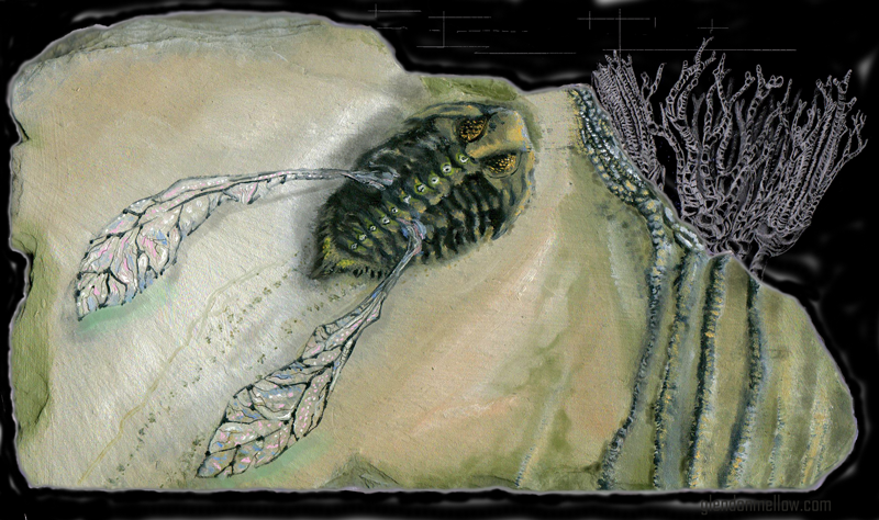 Mythical Flying Trilobite Fossil III, © Glendon Mellow. [Creative Commons Licence Info]