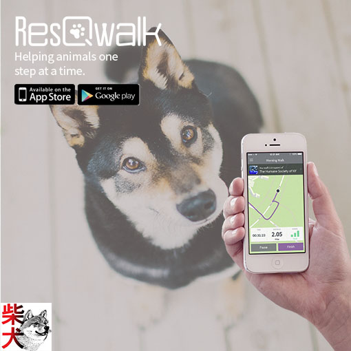 ResQwalk - raise money for MSIR everytime you go for a walk! Just download the app to your iphone or android