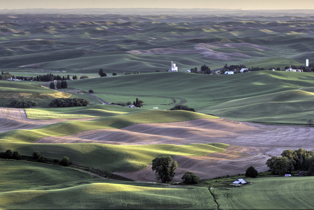 The Palouse at Dusk