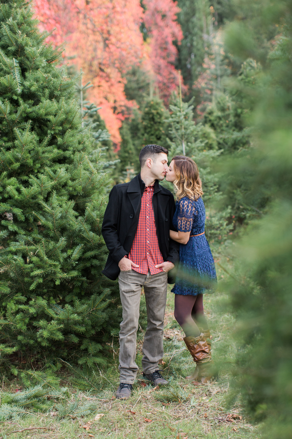 apple-hill-placerville-california-christmas-tree-farm-engagement-photography