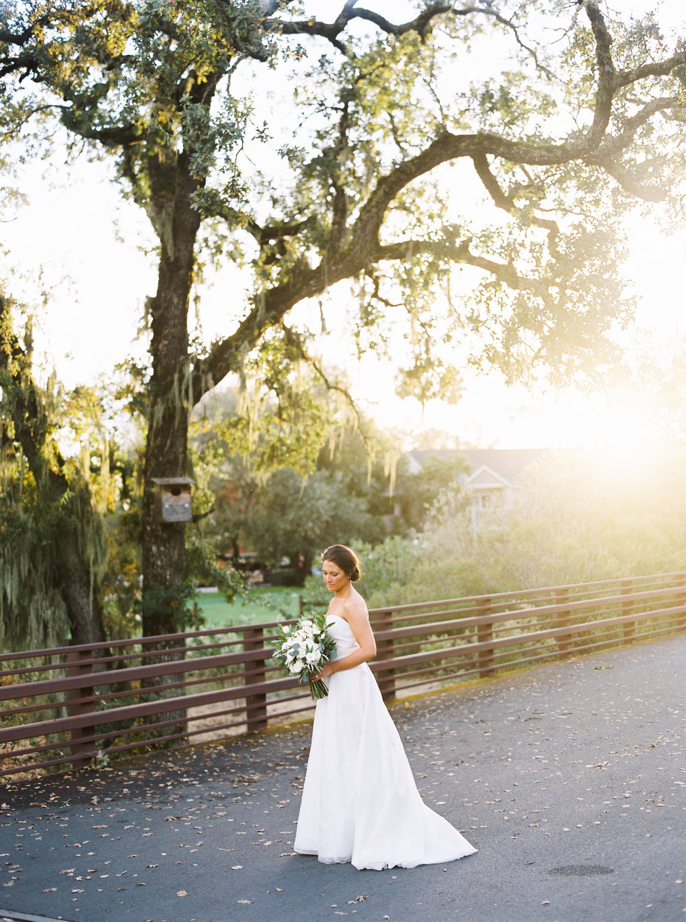 intimate-wedding-at-solage-calistoga-in-napa-163.jpg