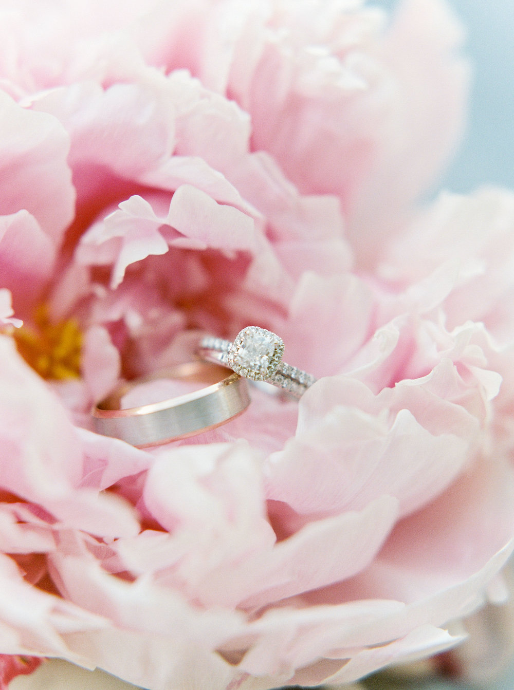 blush-wedding-at-scribner-bend-vineyards-sacramento-california-82.jpg