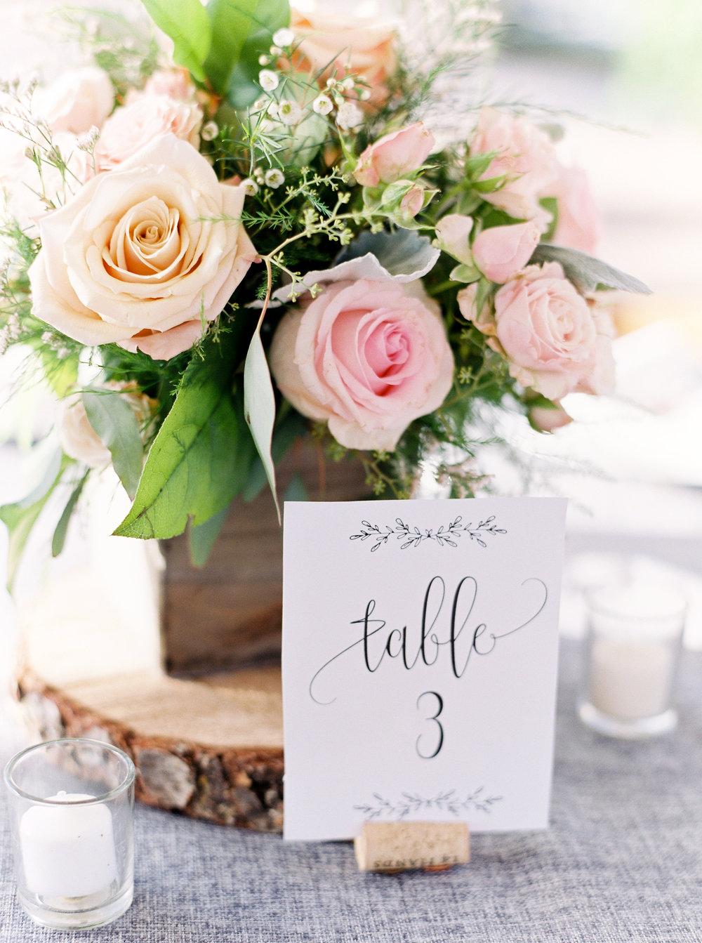 blush-wedding-at-scribner-bend-vineyards-sacramento-california-79.jpg