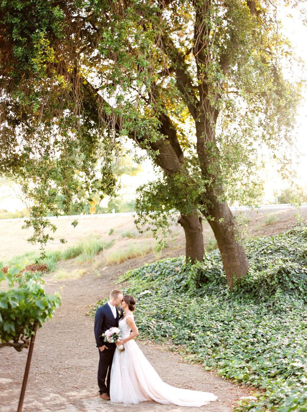 blush-wedding-at-scribner-bend-vineyards-sacramento-california-1-5.jpg