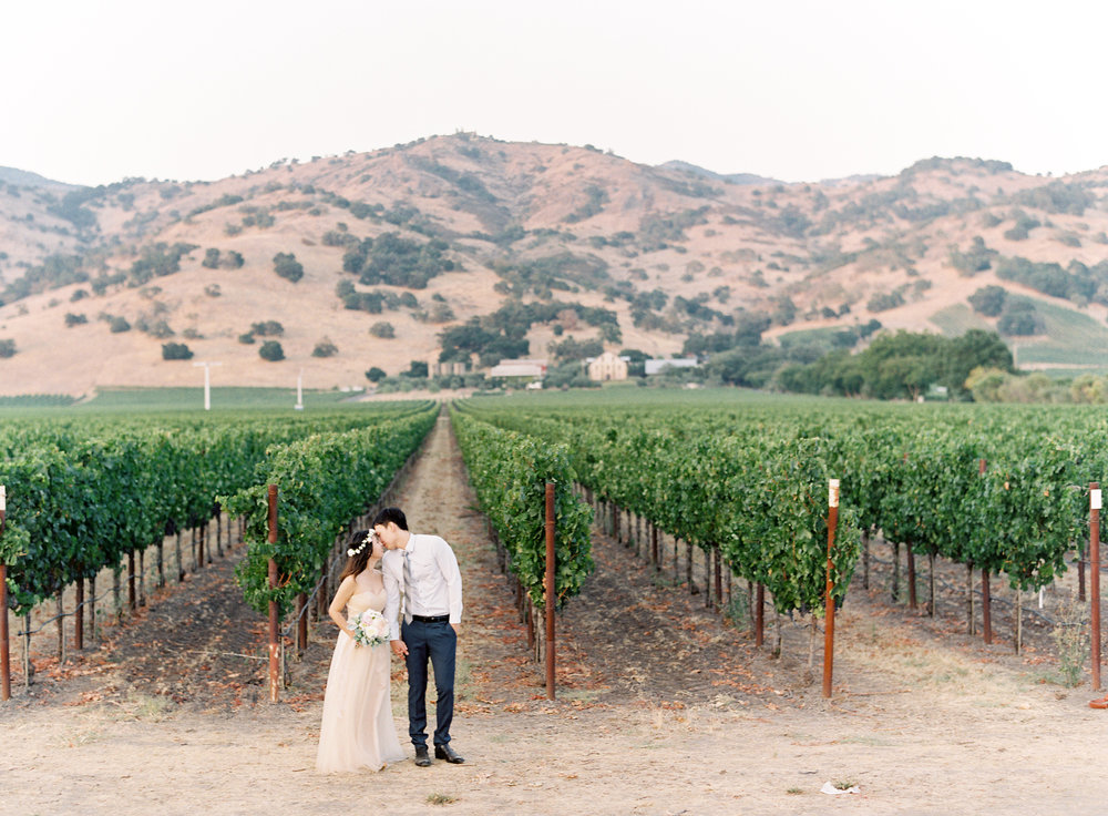 Napa-California-engagement-session-7.jpg
