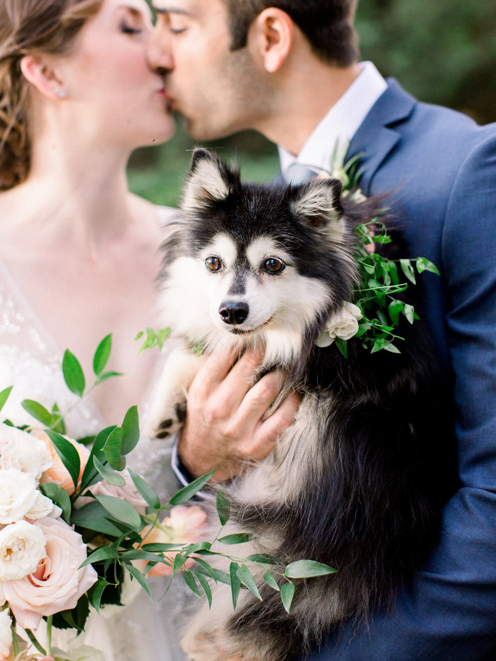 How to include your dog in your engagement and wedding - Kristine Herman Photography