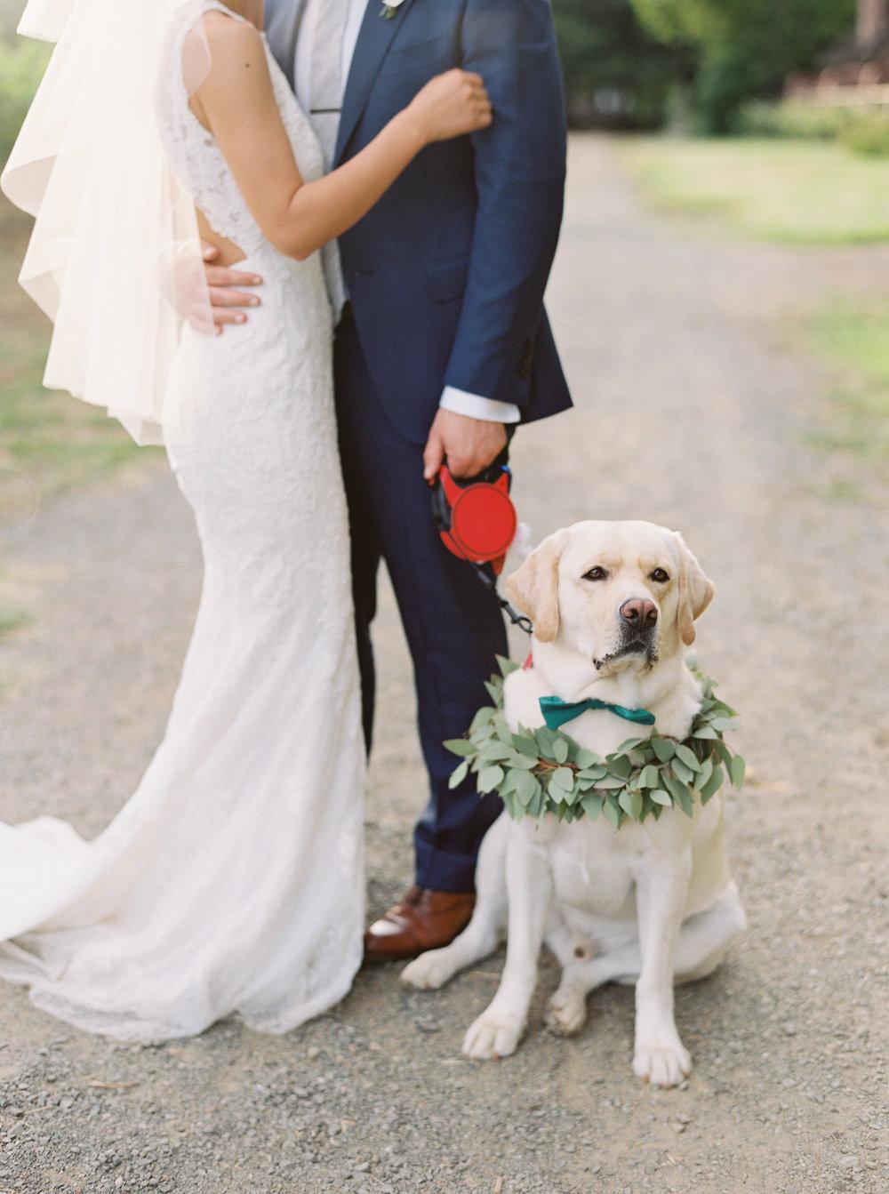 Harvest-inn-wedding-in-napa-california-276.jpg