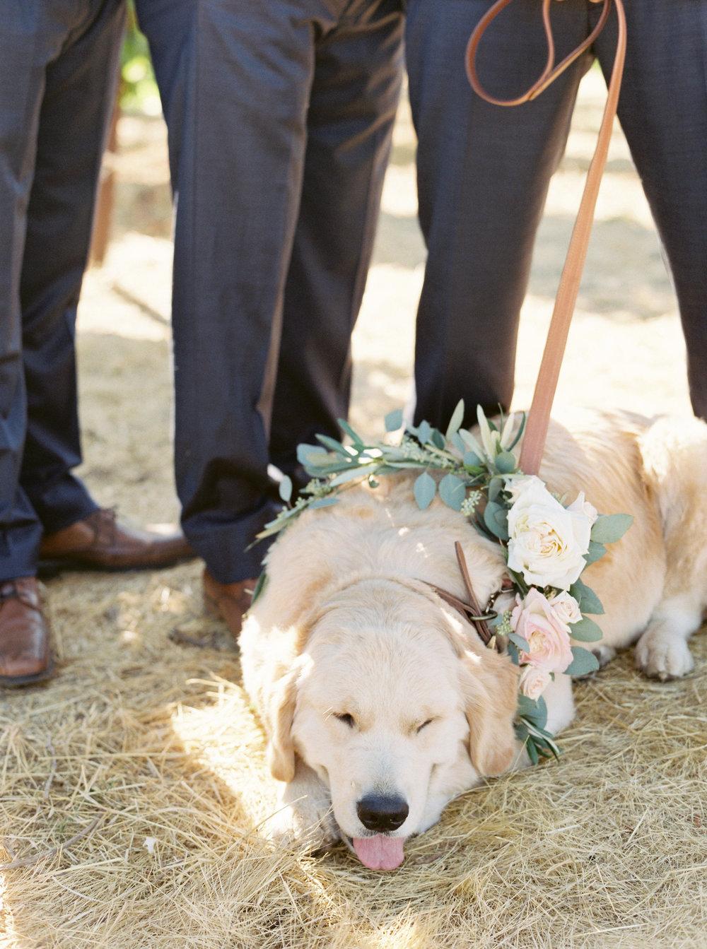 muriettas-well-wedding-in-livermore-california-158.jpg
