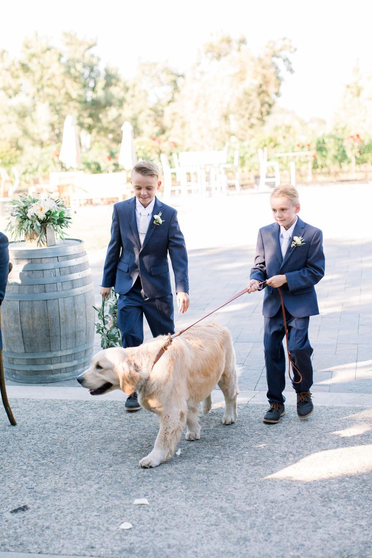 muriettas-well-wedding-in-livermore-california-18.jpg