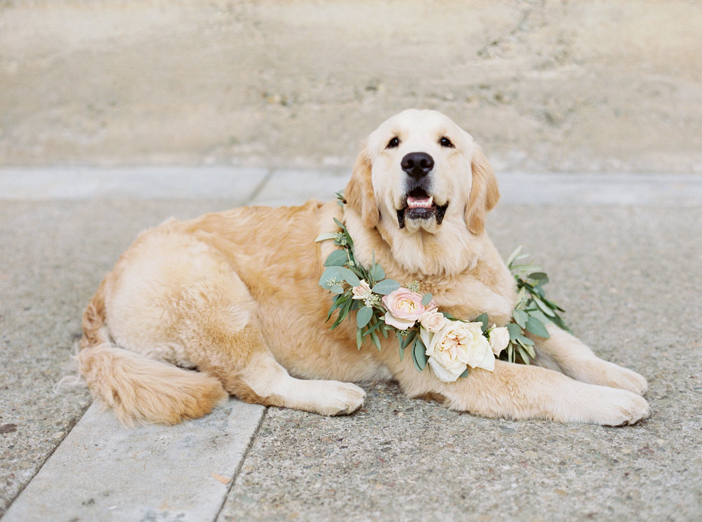 muriettas-well-wedding-in-livermore-california-145.jpg