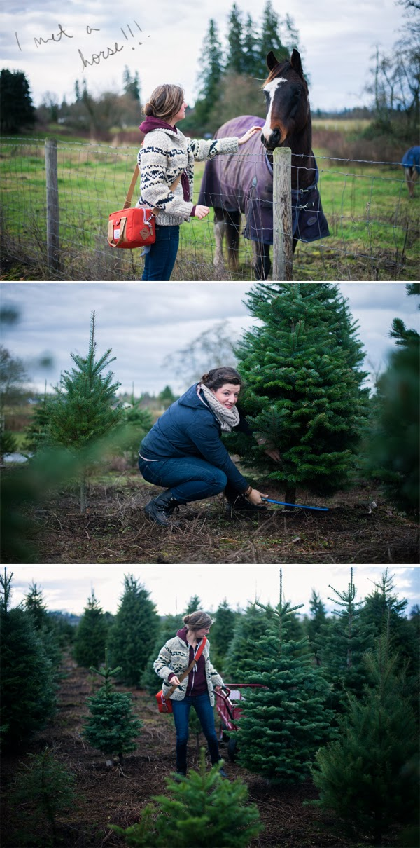 TreeHunting2.jpg