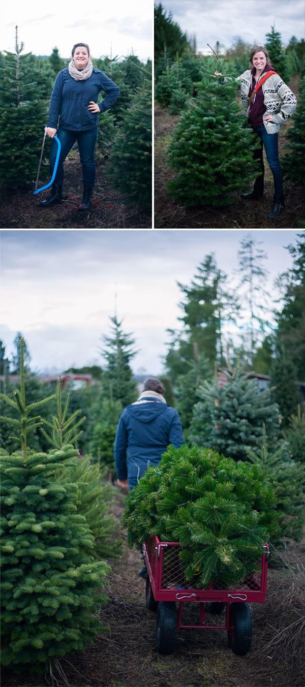 TreeHunting3.jpg