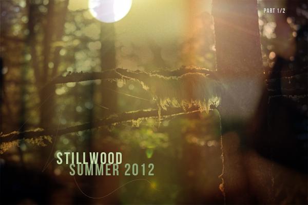 StillwoodRoundup1.jpg