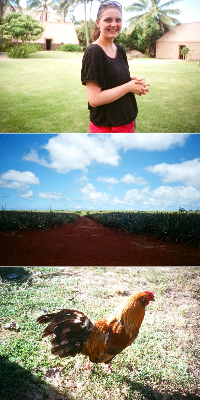 Oahu-6.jpg