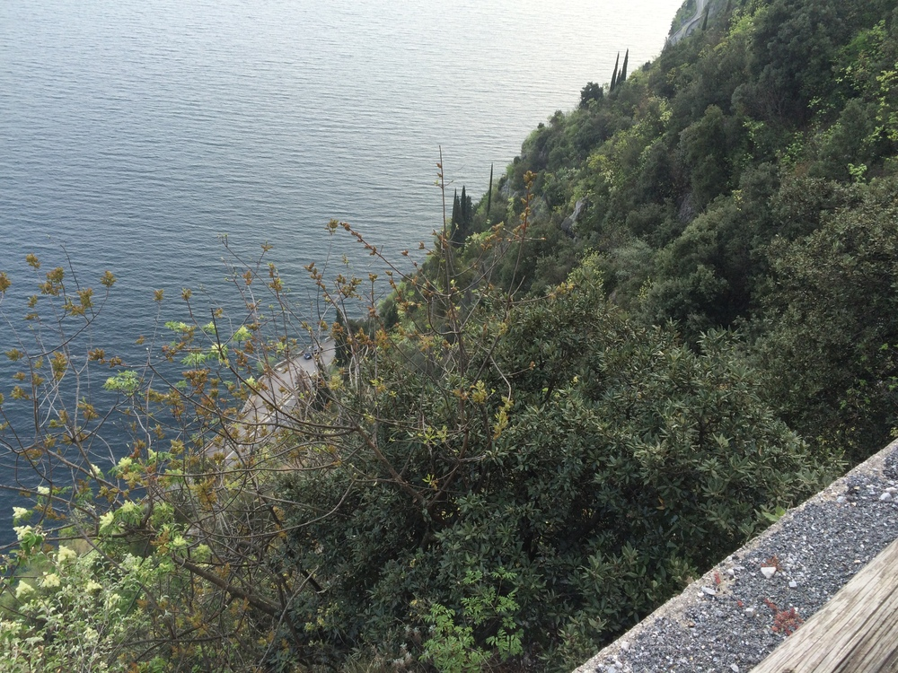 MOUNTAINBIKING LIMONE, LAKE GARDA