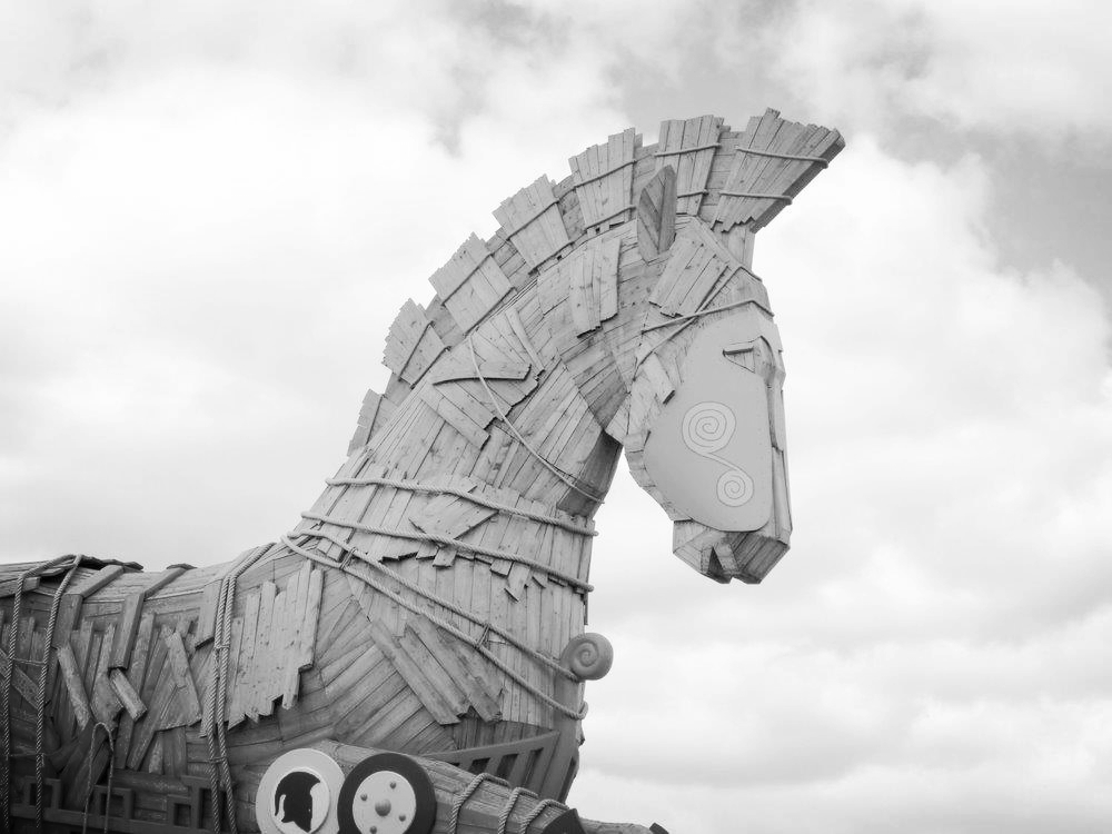 Could you identify a trojan horse OR MALICIOUS SOFTWARE in your environment?