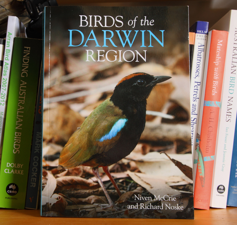 Laurie Ross' eye-catching Rainbow Pitta adorns the cover. One of the easier to see of this typically elusive family, and still relatively easily found around Darwin.