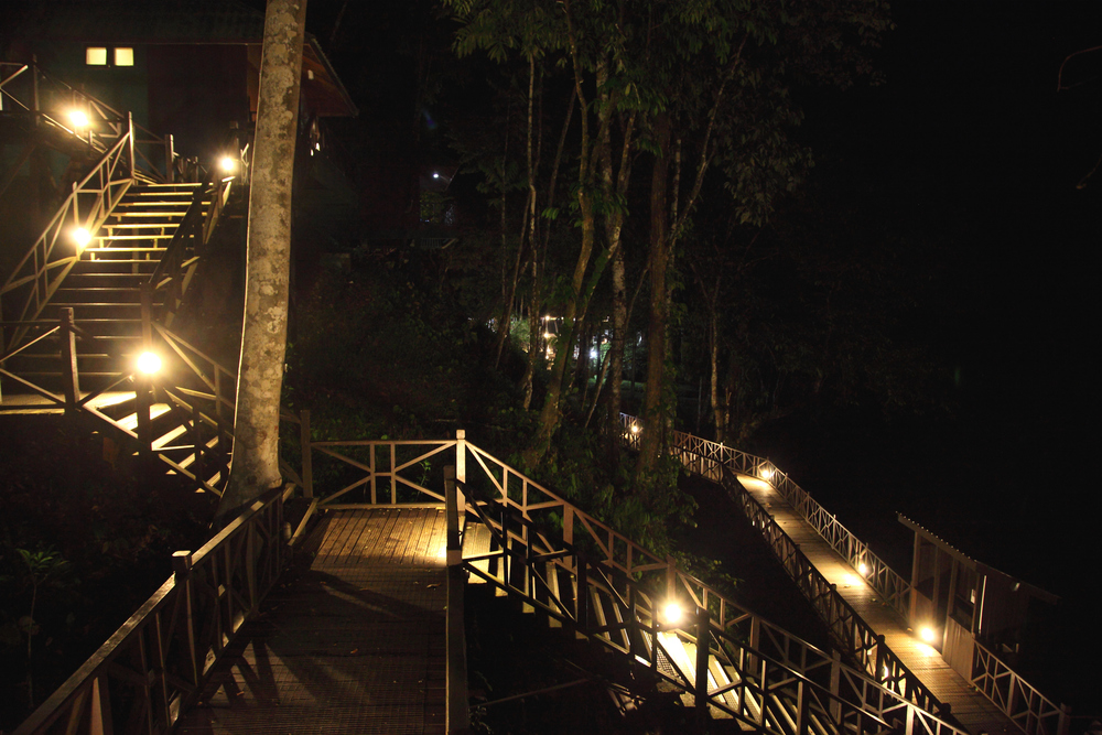 Tabin after dark - an extraordinary Escher-like tangle of stairs through the jungle. Like living in an Ewok village.