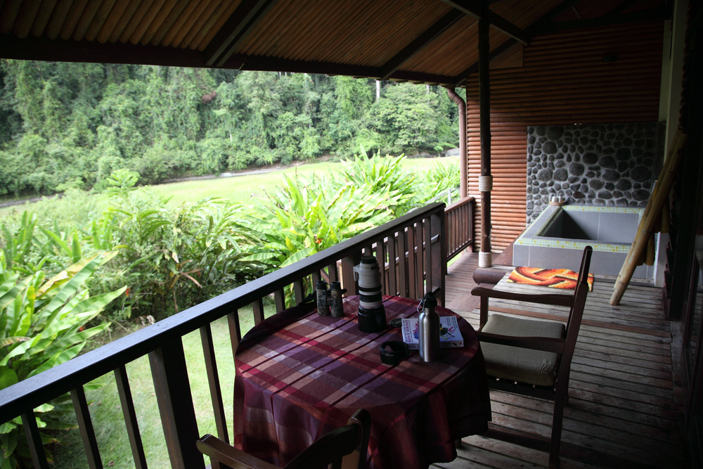 The creature comforts of Borneo Rainforest Lodge, a patch of open riverbank, then a vertical wall of green.