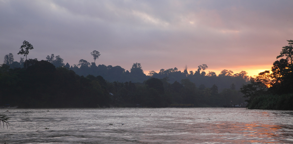 The Kinabatangan near Abai.