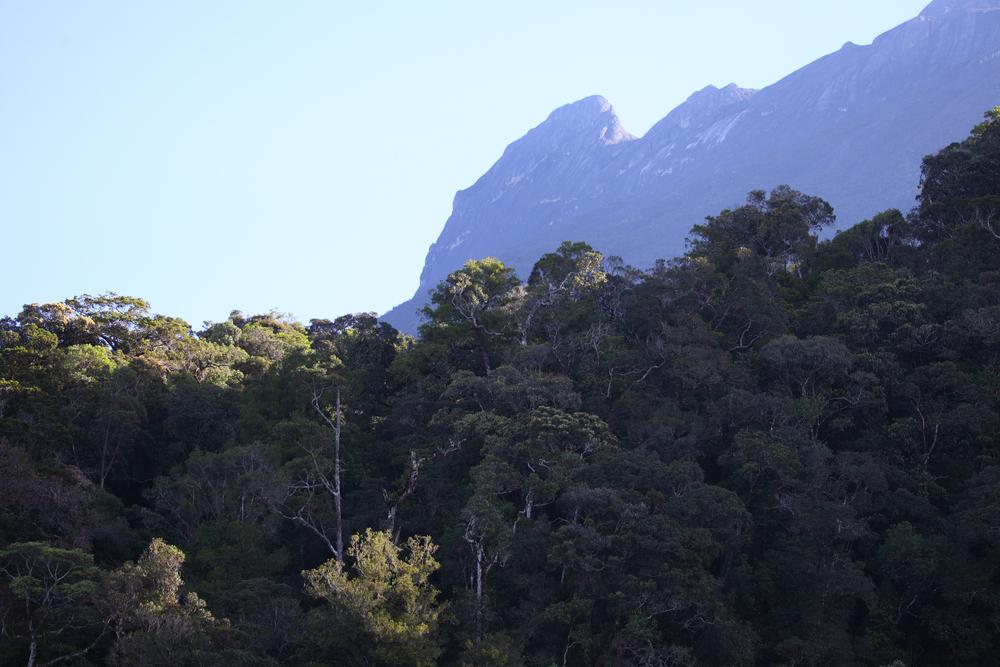 Mount Kinabalu 05.jpg