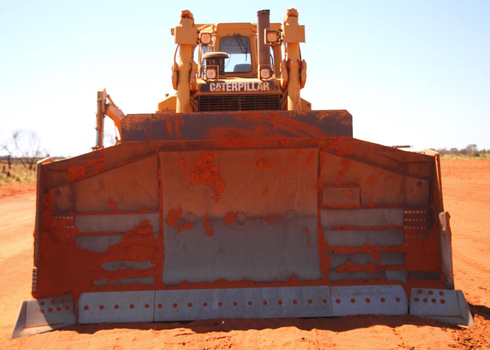 Bulldozers: an  actual  threat to bird conservation