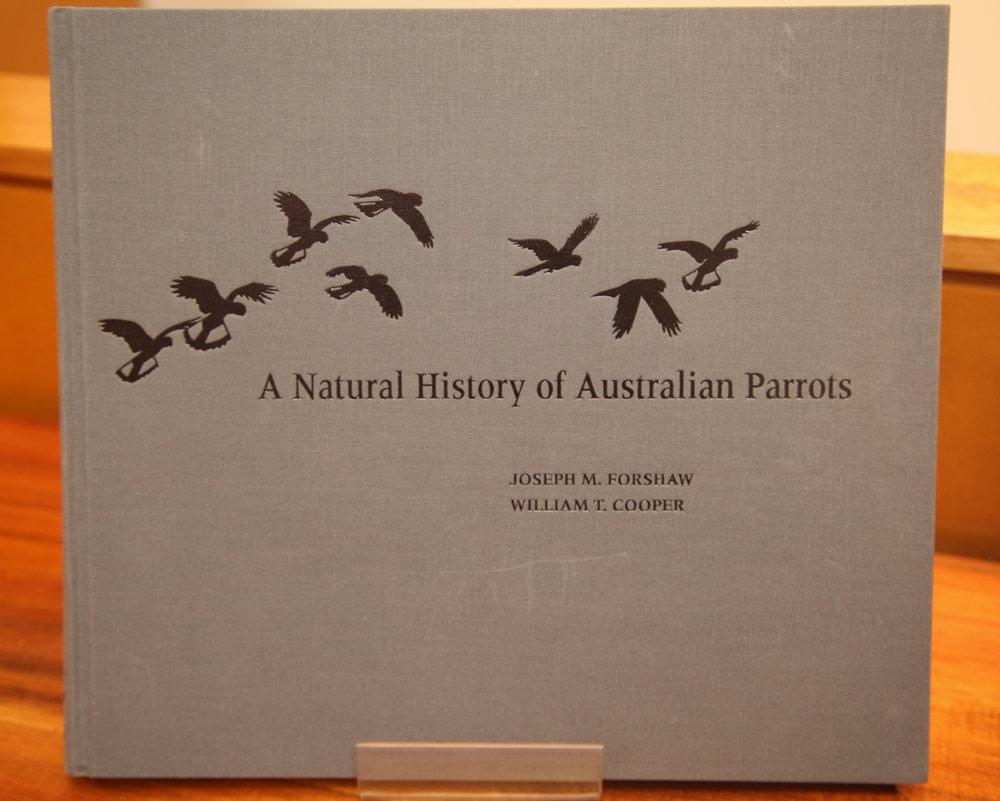 Cooper Parrots 03.jpg