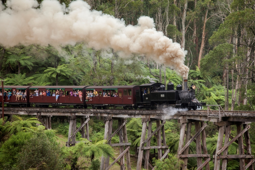 Enjoy the Dandenong Ranges riding on Puffing Billy Steam train