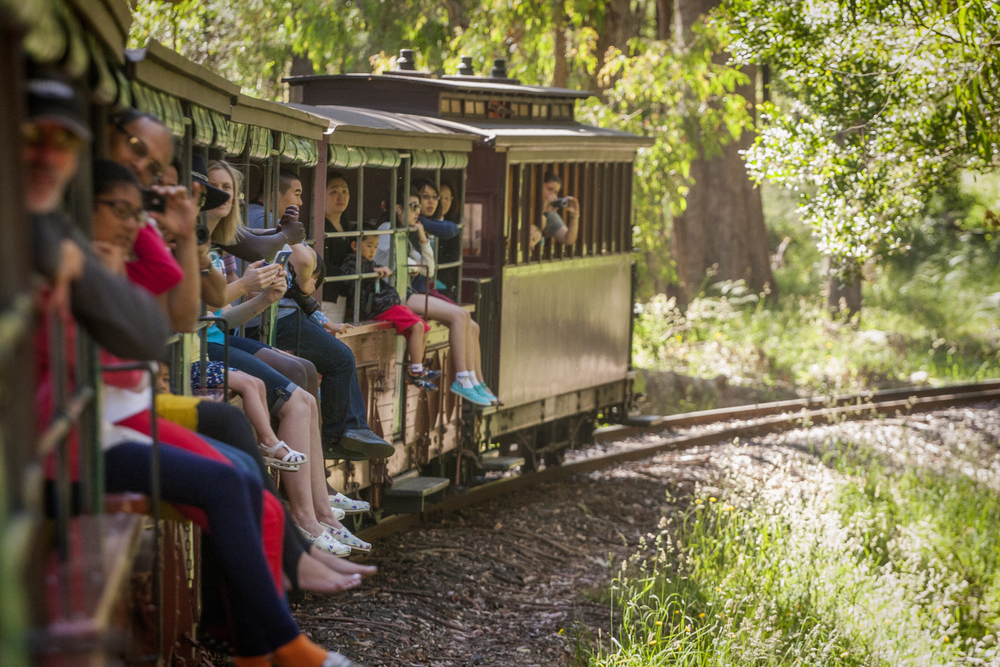 Enjoy the ride through the lush fern gullies and mountain ash forest on Puffing Billy steam train